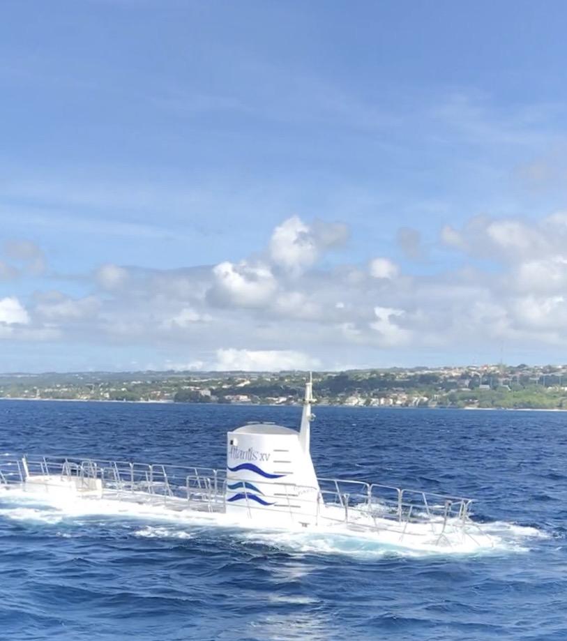 Atlantis Submarine Barbados: Underwater Experience * Ginger on the Go
