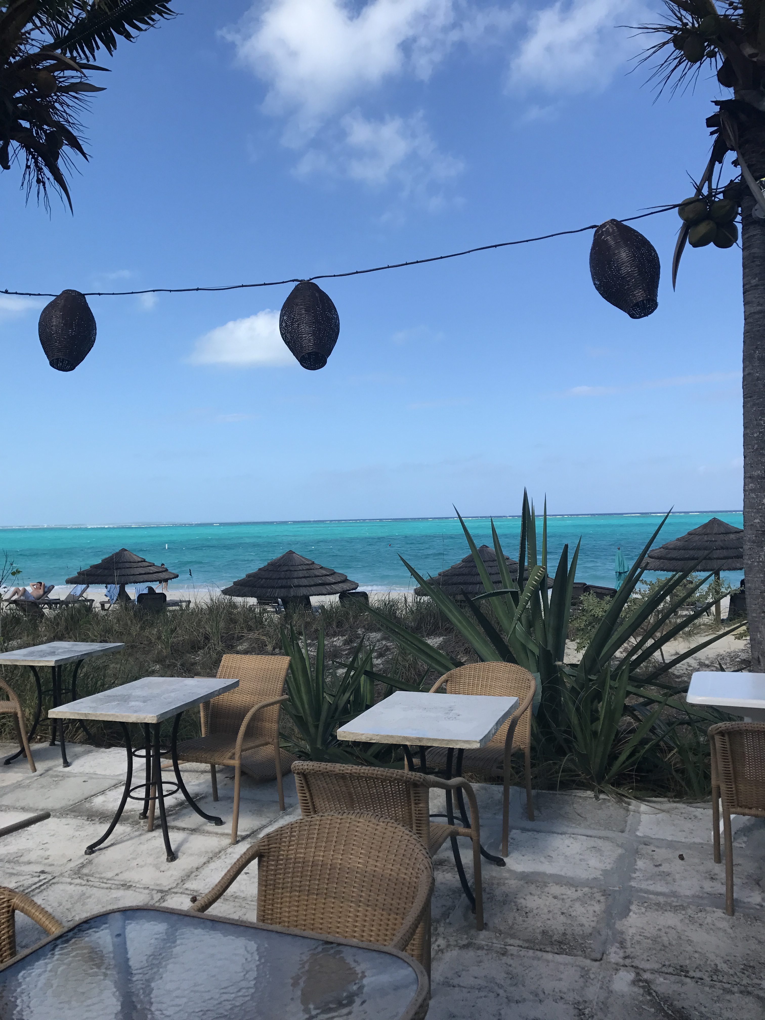 Where to Eat Providenciales, Turks & Caicos Islands * Ginger on the Go
