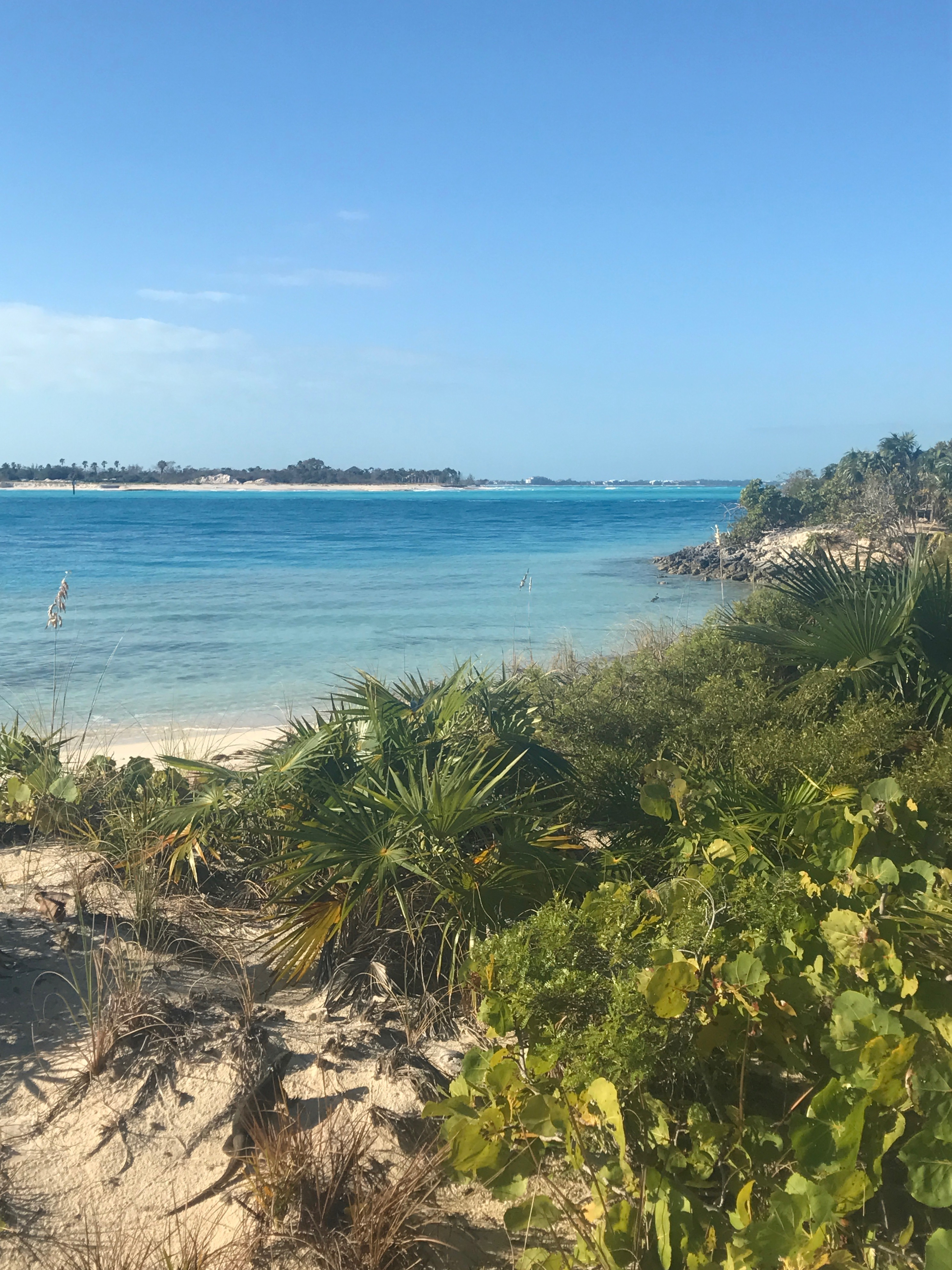 Turks & Caicos Things To Do * Ginger on the Go