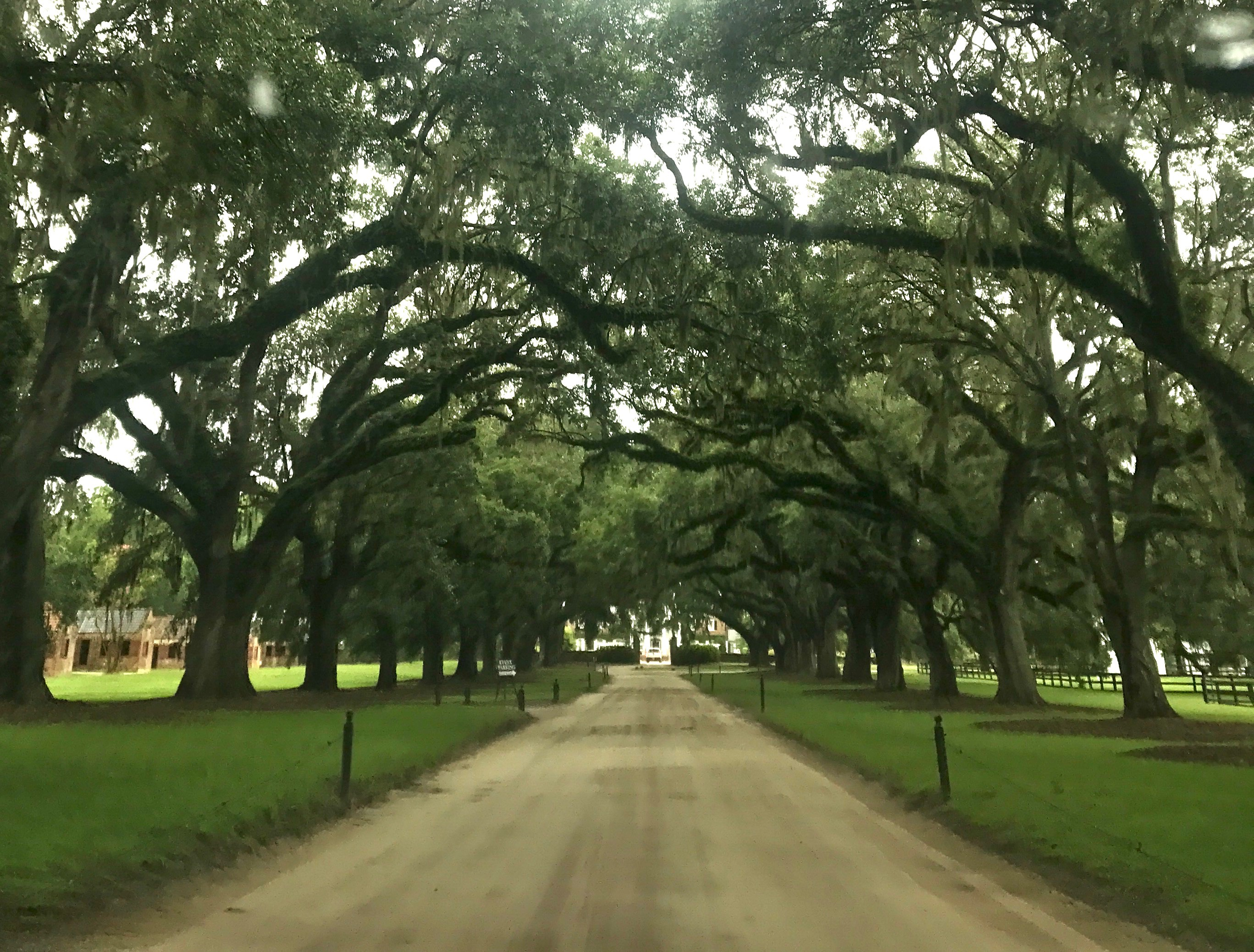 A Visit To Boone Hall Plantation In Mount Pleasant Sc Ginger On The Go